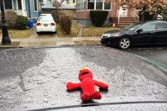Lost Elmo